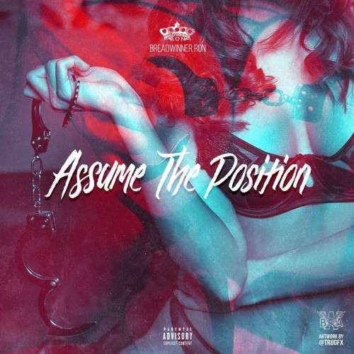 Various Artists - Assume The Position