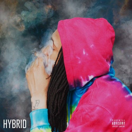 Hybrid - Willy J Peso