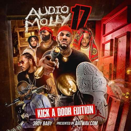 Various Artists - Audio Molly 17 (Kick A Door Edition)