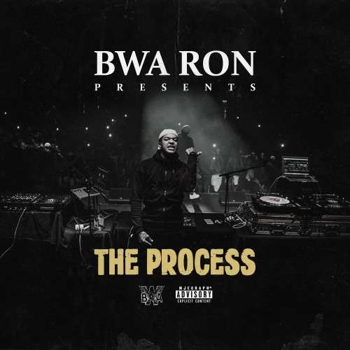 Various Artists - The Process