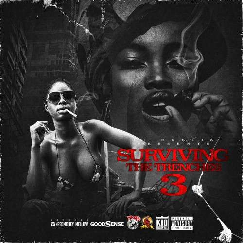 Various Artists - Surviving The Trenches 3