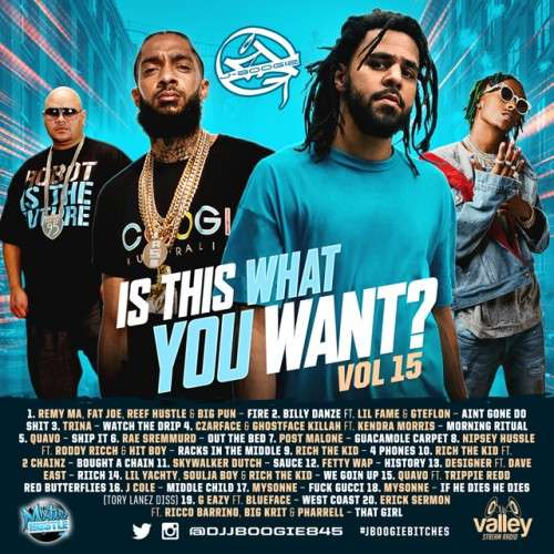 Various Artists - Is This What You Want 15