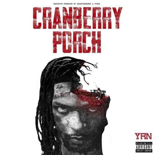 YRN Murk - Cranberry Porch