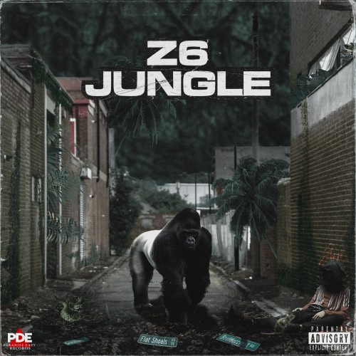 Z6 Jungle - PSGenny & PSDre (PDE)
