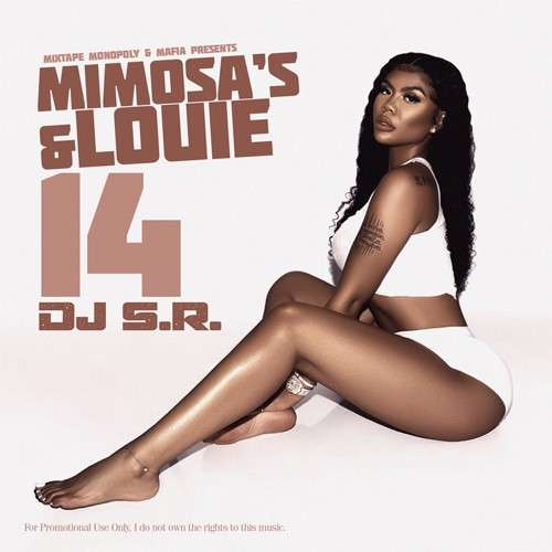 Various Artists - Mimosa's & Louie 14