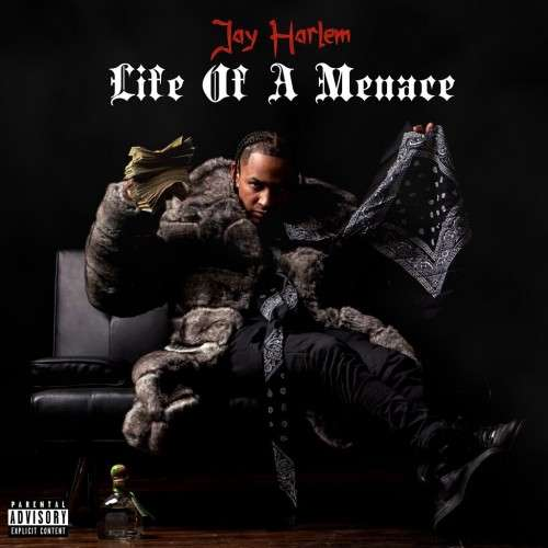 Jay Harlem - Life Of A Menace
