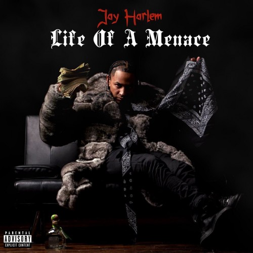 Life Of A Menace - Jay Harlem