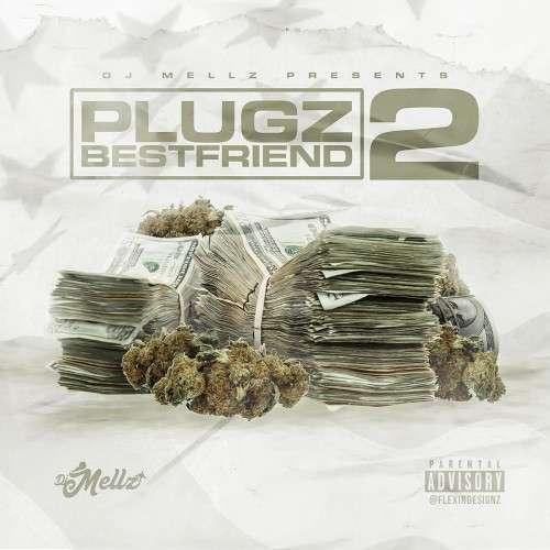Various Artists - Plugz Bestfriend 2