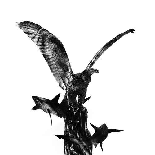 Mush Beezy - Bird Nest